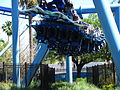 Manta at SeaWorld Orlando 51.jpg