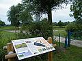 Marais communal, Epagne-Epagnette, Somme, France.JPG