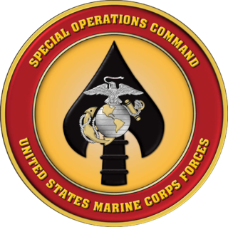United States Marine Forces Special Operations Command United States Marine Corps component command