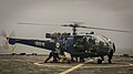 Marines and Sailors assigned to the amphibious dock landing ship USS Pearl Harbor (LSD 52) secure an IN404 helicopter during bilateral interoperability drills following the ship's visit to Goa, India.jpg