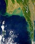 Martaba satellite.jpg