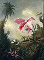 Martin Johnson Heade - Two Hummingbirds, Two Types of Orchids and a Palm Tree (15313442064).jpg
