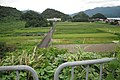 Maruyama, Tsuruga 敦賀市鞠山 Aug 9, 2010.jpg