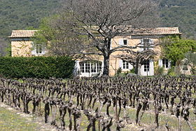 image illustrative de l'article Coteaux-d'aix-en-provence