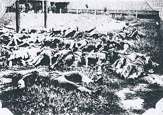 Tungchow mutiny - Image: Massacred corpses of Japanese victims of the Tungchow Massacre 1