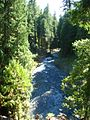 McKenzie River from top of Koosah Falls.jpg