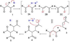 Michael reaction - Michael reaction mechanism