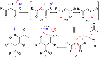 Michael reaction - Michael reaction mechanism