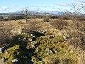 Mid Cameron, south-eastern ruin - geograph.org.uk - 1716706.jpg