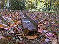 Middle-prong-trail-tennessee.jpg
