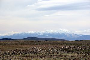Middle Atlas - Panoramic of the Middle Atlas