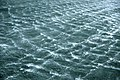 Milford Sound 12.jpg