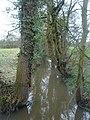 Mill Brook where Broadoak Lane meets Harrison Lane - geograph.org.uk - 143233.jpg
