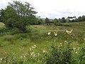 Milltown, Drumquin - geograph.org.uk - 1404841.jpg