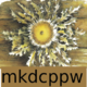Mkdcppw-256x256.png