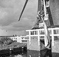 Molenaar bezig de nationale vlag binnen te halen of op te hangen - Aarlanderveen - 20003920 - RCE.jpg