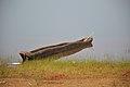 Monobloc Wooden Boat - Ramial Reservoir - Dhenkanal 2018-01-25 9587.JPG