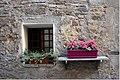 Montepulciano 47DSC 0595 (46753549245).jpg