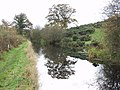 Montgomery Canal near Wernllwyd - geograph.org.uk - 617235.jpg