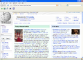 Mozilla Firefox 3 in MS XP.png