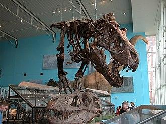 Maryland Science Center - Image: Msc fg 02