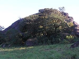 Brahmagiri (hill), Karnataka - Image: Munikal Caves