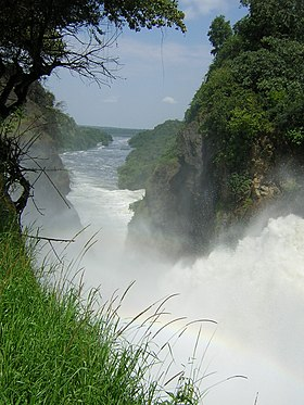Image illustrative de l'article Parc national Murchison Falls
