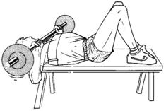 Renforcement musculaire exercices exercices du membre - Pectoraux developpe couche ...