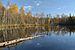 Must-Jaala järv2.JPG