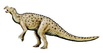 Ornithopoda - Restoration of Muttaburrasaurus, an early iguanodont