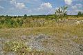 Národní přírodní památka Státní lom, Čelechovice na Hané, okres Prostějov (04).jpg