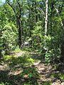 NBFSP Camden TN 2012-07-28 026.jpg