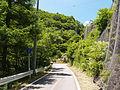 Nagano-r2-Magoe-Pass.JPG