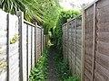 Narrow footpath between fences - geograph.org.uk - 1282933.jpg