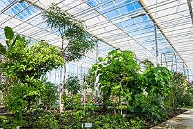 National Botanic Garden.jpg
