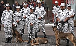 National Guard of Mexico.jpg