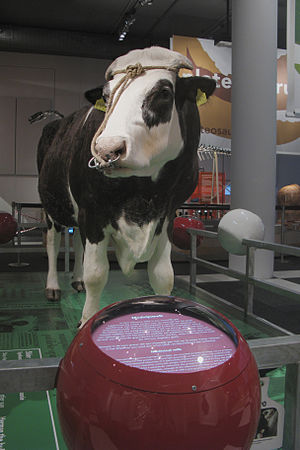 Herman the Bull - Herman the Bull, Naturalis