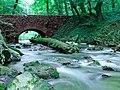 Naturschutzgebiet Neandertal NRW, Fluss Düssel, Fotograf J. & N. Suchorski 2.jpg