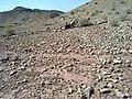 Navidhand Valley, Khyber Pakhtunkhwa , Pakistan - panoramio (44).jpg