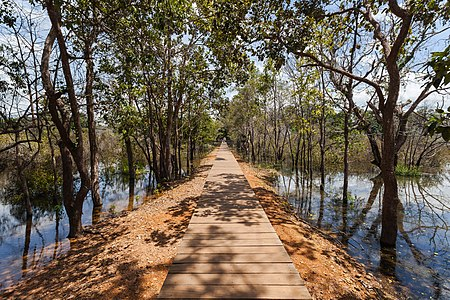 Way over a pond to reach the Khmer temple of Neak Pean, an artificial island that belongs to the Angkor temple complex, located today in Cambodia. The buddhist temple Neak Pean, part of the temple Preah Khan was erected by order of Jayavarman VII in the 12th century.