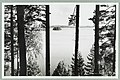 Nervanderin kumpu, Laukanlahti, Mäntyniemi, Nuotsaari, Laukansaari, Albin Aaltonen 1950s–1960s PK0145.jpg
