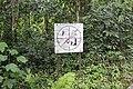 Niah Cave rainforest Entrance - panoramio.jpg