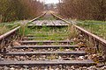 Nieczynna linia kolejowa, wieś Kolbudy - panoramio.jpg