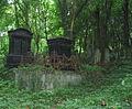 Nowy Cmentarz Zydowski - Przemysl15.jpg