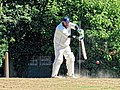 Nuthurst CC v. Henfield CC at Mannings Heath, West Sussex, England 058.jpg