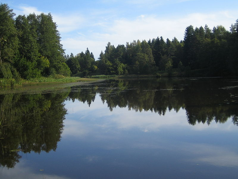 3d64c033727 Oandu järv (Altja paisjärv) - KALAPEEDIA