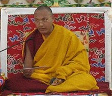 Ogyen Trinley Dorje by Prince Roy cropped.jpeg