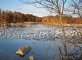 Oies blanches - panoramio (1).jpg