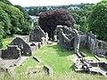 Okehampton Castle, 2009 - geograph.org.uk - 1574358.jpg