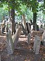 Old Jewish Cemetery, Prague 009.jpg